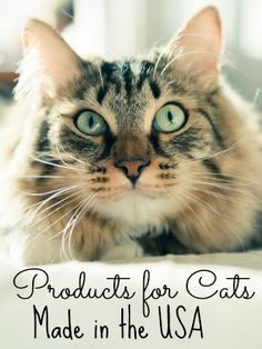 10 best Cat Products #madeinUSA - List by @usalovelist #cats #catlovers #USALovelist