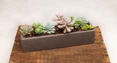 Concrete Planter  18 Straight Runner by OpusStone on Etsy, $50.00