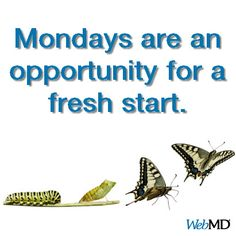 Make Mondays your day for fresh starts!