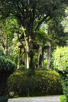Gardens of Villa Serena- a private property for sale near Florence, Italy.