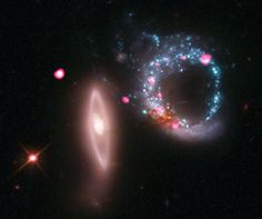 Arp 147 contains a spiral galaxy (right) that collided with an elliptical galaxy (left), triggering a wave of star formation.    Many of these newly-born massive stars raced through their lives and ended with supernova explosions, some as black holes.    A ring of these black holes can be seen in the Chandra data (pink) around the spiral galaxy.