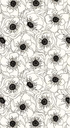 White anemones...nice pattern.