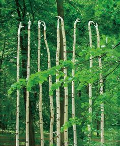 12 Amazingly Creative Examples of Environmental Art - My Modern Met
