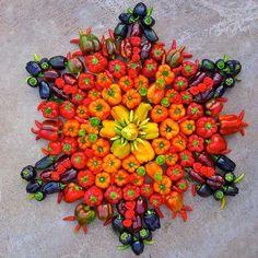 art. food.