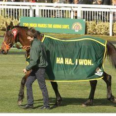 ... horses, farmer, funni, hors race, blankets, race tracks, pie