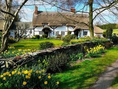 Beautiful yet quaint English cottage