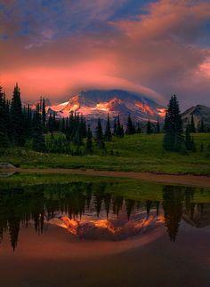 Mt. Rainier Sunset - Washington
