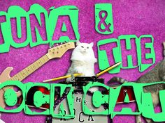 Amazing Acro-Cats and Rock-Cats Purr-fect Tour Bus by The Amazing Acrocats, via Kickstarter.