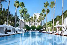 The Delano Miami Beach Pool