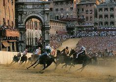 I love Sienna, Italy