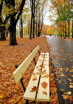 Autumn in Warsaw, Poland
