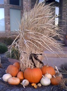Fall / Autumn / Harvest / Thanksgiving:  Outdoor decor
