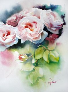 picasa, artist eye, aquarell, jean claude papeix, jeans, art watercolour, watercolor rose, claud papeix, flower paint