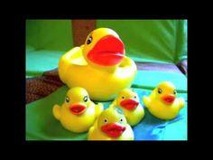 5 little ducks video song