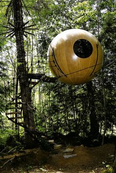 Amazing Tree Houses - Qualicum Bay, British Columbia