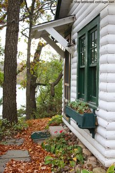 Nothing sweeter than a cute cottage on a midwestern lake