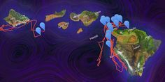 Science Graphic of the Week: Mesmerizing Map Tracks Whales Swimming Around Hawaii