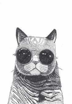 Cool Cat by Polkip | Society6