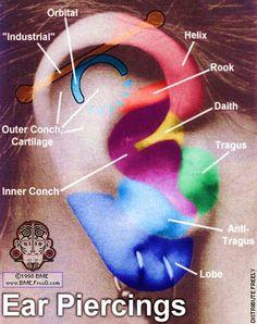 Piercing chart.