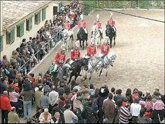 Carrusel de ocho caballos  policía montada  Palm Mallorca Spain