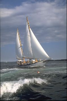 A Morning In Maine - Day sails on beautiful Penobscot Bay leaving from Rockland Maine