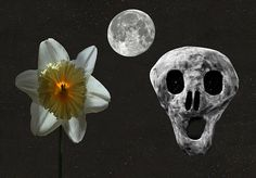 Death and the Daffodil - Eric Kempson