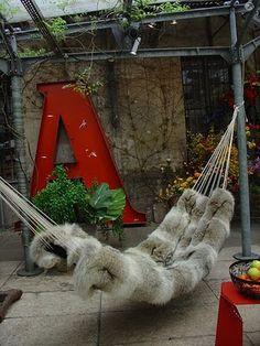 incredible hammock!