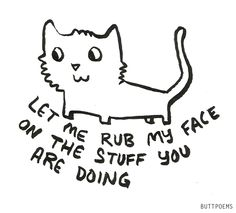 Yes. #cats