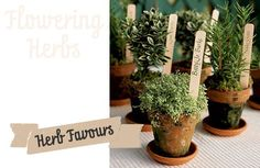 wedding favors, herb table decorations, wedding favours