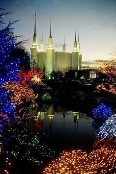 DC Temple with Christmas lights