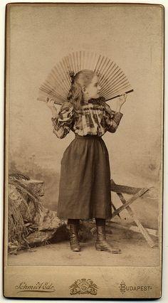 ca:1890s