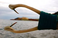 Inuit made kakivak (fishing spear) via Stacey Aglok MacDonald