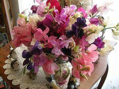 vase of sweetpeas