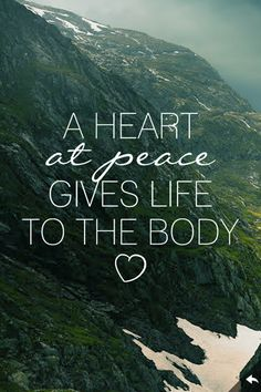 Peace, it's much better than happiness. Happiness is an emotional response, peace is a state of being.