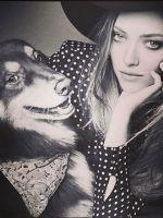 Amanda Seyfried's Dog Steals Her Elle Cover Thunder #refinery29