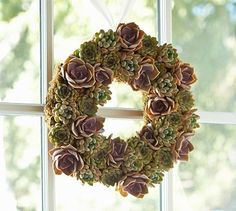 Live Succulent Wreath #potterybarn