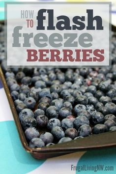 How to Flash Freeze Berries -- The BEST way to preserve summer berries (and the easiest!)