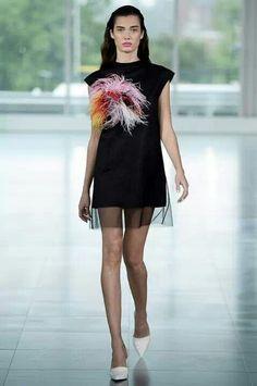 Ostrich Feather Medley <3