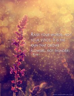 Silent Sunday: Raise Your Words, Not Your Voice