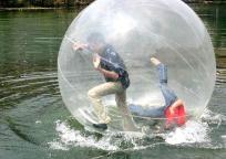 385 Bucks! - Water-Walking Balls FREE SHIPPING