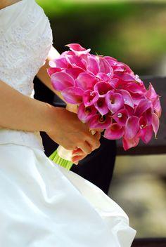 Pink calla lily bouquet Orlando wedding flowers / www.weddingsbycarlyanes.com