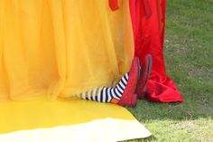 Wizard of Oz themed party details...LOVE it!
