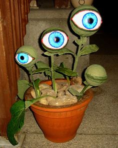 """Eyeball plant... This kinda reminds me of the eye that was in the purse in the movie """"my stepmother is an alien"""""""