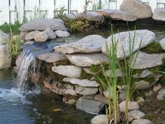 how to build pond waterfall and wall waterfalls with flagstones, diy renovations projects, landscaping, outdoor living, ponds water features...