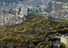Aoyama Cemetery, Tokyo