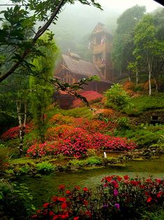 Amazing Places you Should Visit in Your Life - Chapel in the Clouds, Costa Rica