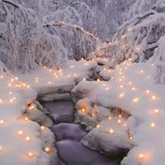 Stream with snow and lights