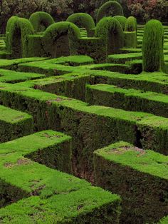 Horta Maze in Barcelona, showing the hedges and central arches.    a maze by crookhaven, via Flickr