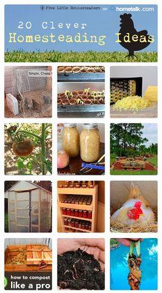 homestead idea, 20 clever