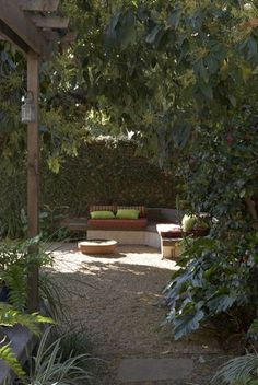 citrus tree gravel | Pro Portfolio: A sustainable garden makeover, with outdoor living top ...
